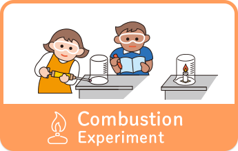 Combustion Experiment
